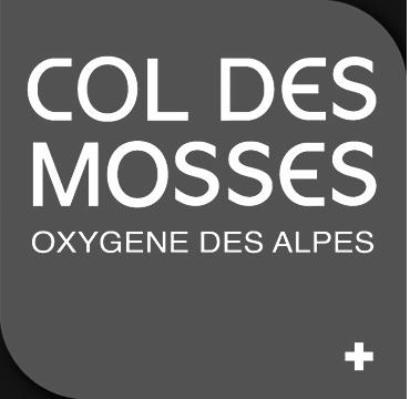 Logo du Col des Mosses. Pixium