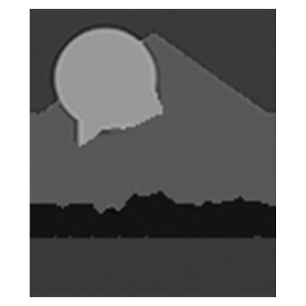 Logo LPM Immobilier Pixium