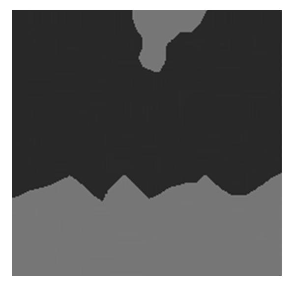 Logo Non Stop Gym. Pixium